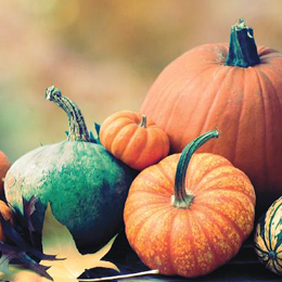 October Datebook
