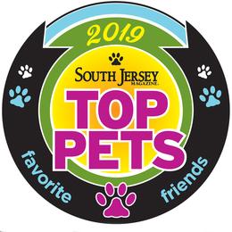 2019 Top Pets
