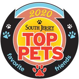 Top Pets 2020