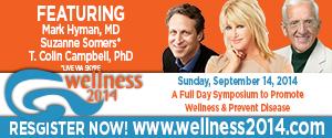 Wellness 2014 300 x 250